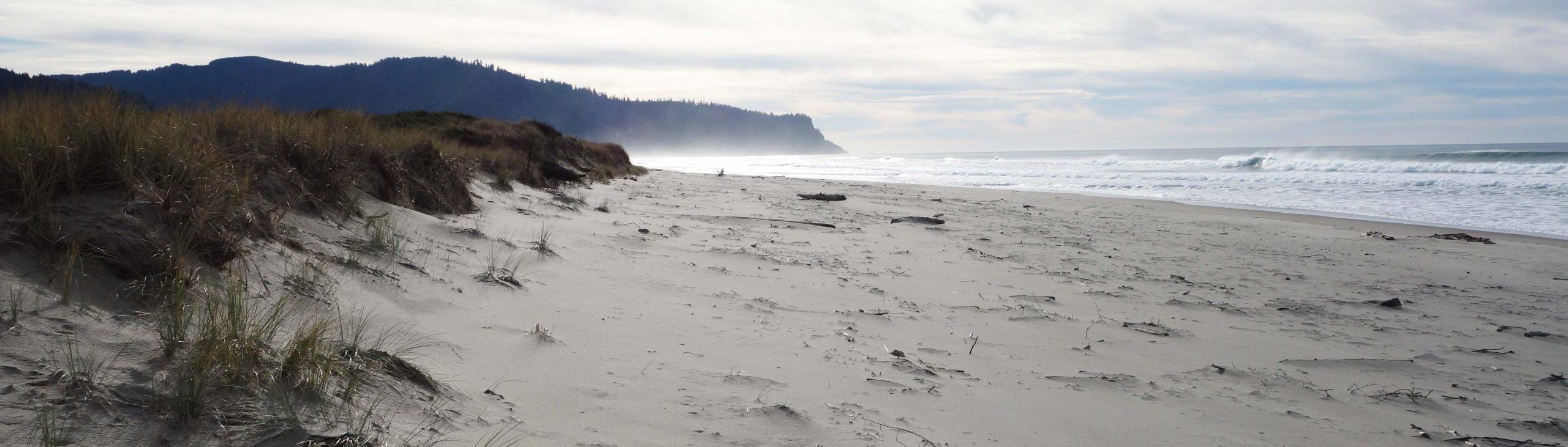 Private Beach Access on the Oregon Coast